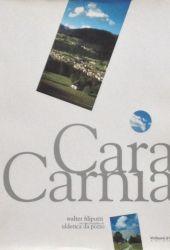 Fotografia della copertina del libro Cara Carnia scritto da Walter Filiputti